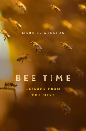 bee time - book